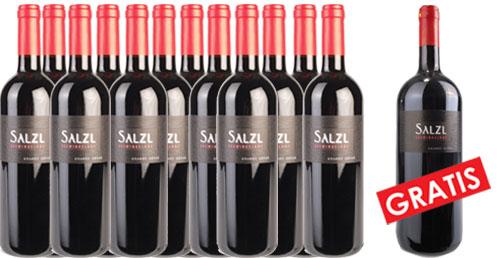Zweigelt Reserve 2016 Salzl im 12er Pack + 1 Magnum Gratis   / Salzl