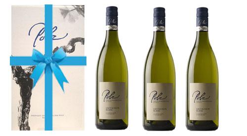 Sauvignon Blanc Czamilla 2017 + 3er Geschenkskarton   / Polz Erich & Walter