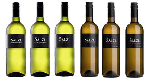 Top-Chardonnay vom Weingut Salzl  im 6 Pack   / Salzl