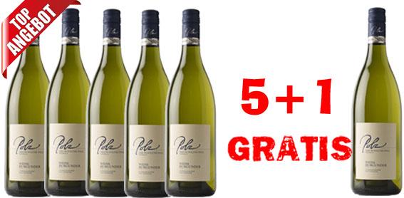 Sauvignon Blanc Steirische Klassik 2017 Erich & Walter Polz  5 +1 Gratis   / Polz Erich & Walter
