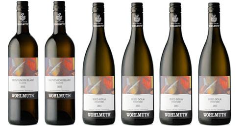 Degustationspaket vom Weingut Wohlmuth   / Wohlmuth Gerhard