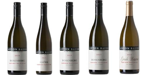 Degustationsweinpaket 6er Pack  Anton Bauer    / Anton Bauer