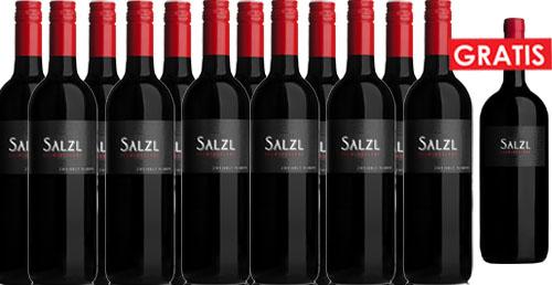 Zweigelt Reserve 2017 Salzl im 12er Pack + 1 Magnum Gratis   / Salzl