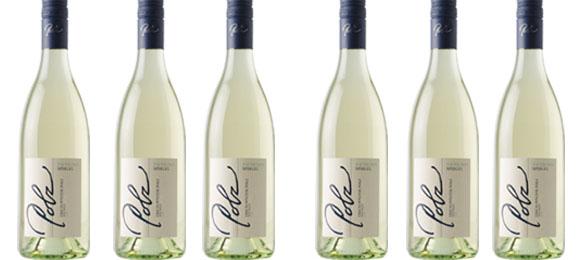 Sauvignon Blanc Spiegel Polz 2019  im 6er Pack   / Polz Erich & Walter
