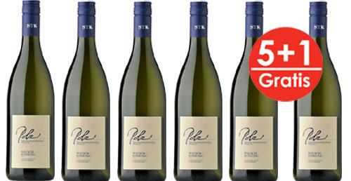 Sauvignon Blanc Südsteiermark DAC 2018 E&W Polz  5 +1 Gratis   / Polz Erich & Walter