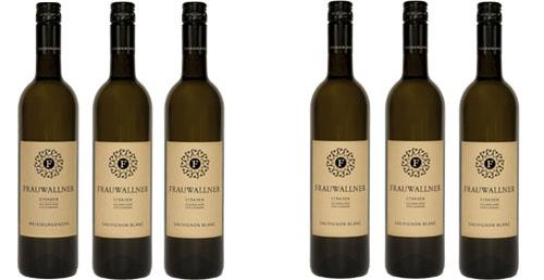 Sauvignon Blanc Vulkanland Steiermark DAC 2018 im 6er Vorteilspaket   / Frauwallner
