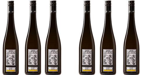 Grüner Veltliner Am Berg  2019 OTT im 6er Pack zu je € 10.90   / Ott Bernhard