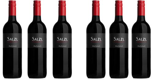 Zweigelt Reserve 2016 Salzl  im 6er Pack zu je € 9,90   / Salzl