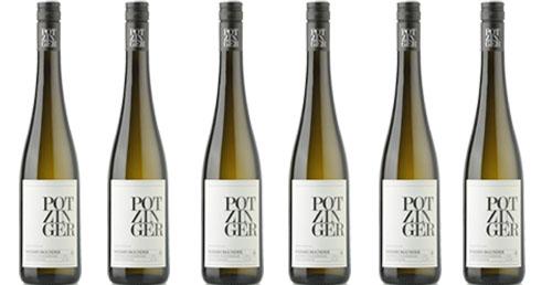 Potzinger Sauvignon Blanc Tradition 2019    / Potzinger Stefan