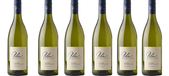Sauvignon Blanc Südsteiermark DAC  2019 Polz im 6er Paket   / Polz Erich & Walter