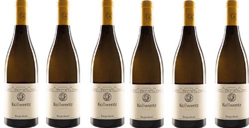 Chardonnay Gloria 2018 Kollwentz    / Kollwentz