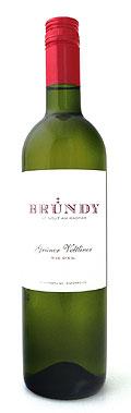Grüner Veltliner Ried Stiegl 2018 / Bründy Wein Werk Wagram