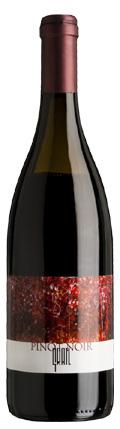 Pinot Noir Ried Fennisberg 2009 / Gratl