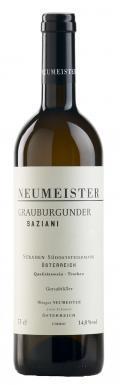 Grauburgunder Saziani Grosse STK Lage 2016 / Neumeister