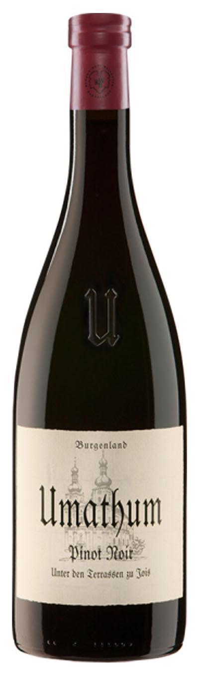 Pinot Noir Unter den Terrassen 2011 / Umathum Josef
