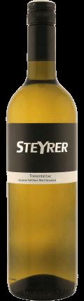 Grüner Veltliner Stoaried  2020 / Weingut Steyrer