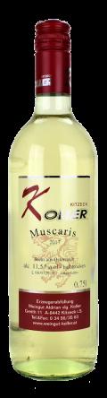 Muscaris  2017 / Koller