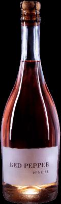 Sekt Shiraz Rosé Schaumwein  2019 / Pfneisl