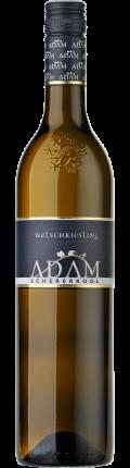 Welschriesling Südsteiermark DAC 2020 / Adam-Schererkogl