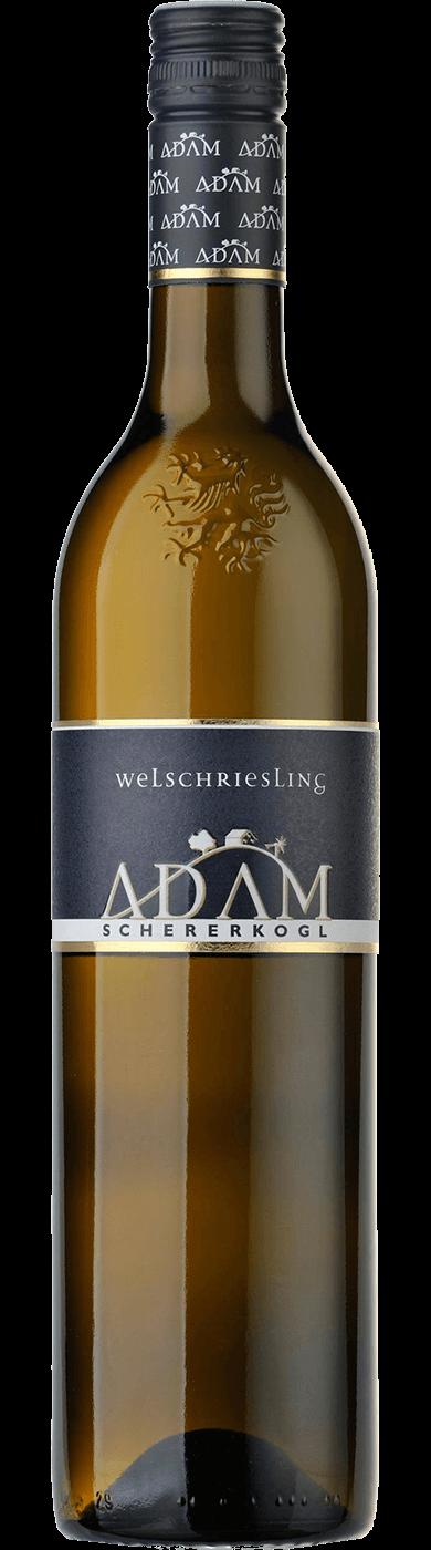 Welschriesling Südsteiermark DAC 2019 / Adam-Schererkogl