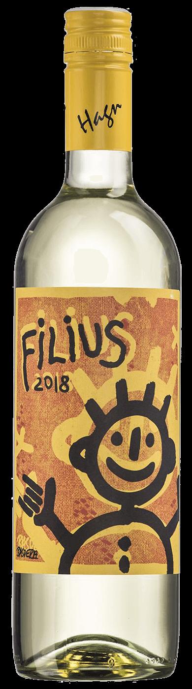 Grüner Veltliner Filius 2018 / Hagn
