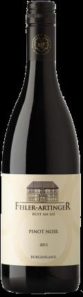 Pinot Noir Ried Ruster Umriss 2016 / Feiler Artinger