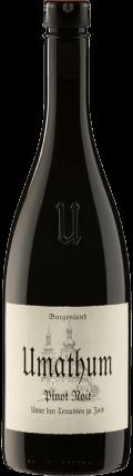 Pinot Noir Unter den Terrassen 2016 / Umathum Josef