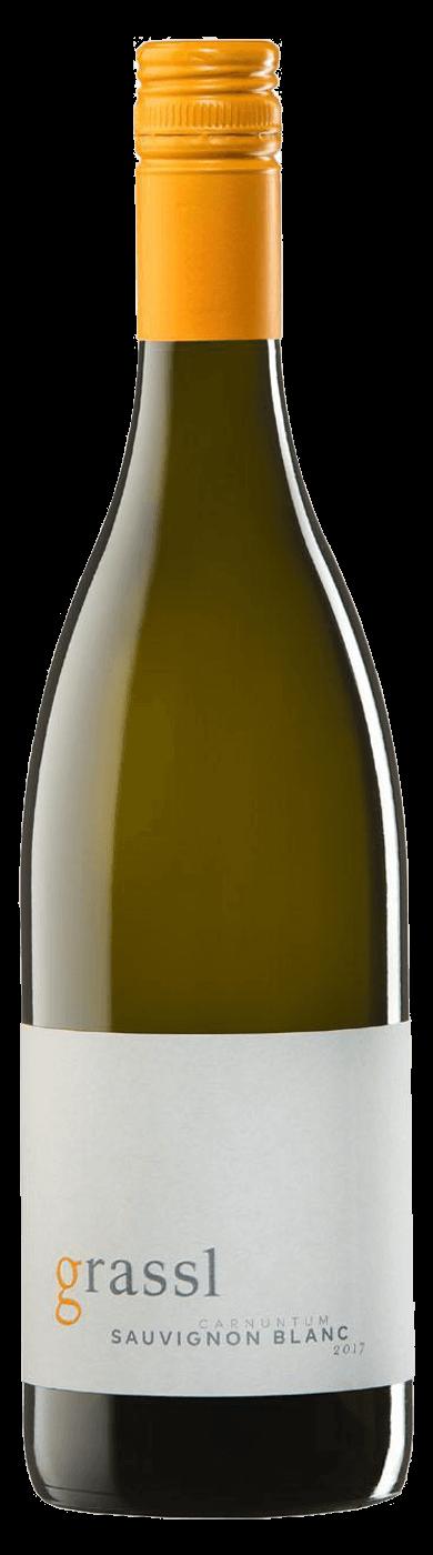 Sauvignon Blanc  2018 / Grassl Philipp