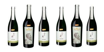 Rotweinpaket 2017   / Biodyn Weinhof HAIDER