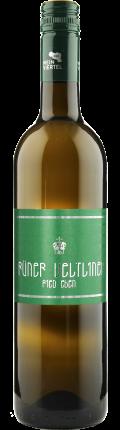 Grüner Veltliner Weinviertel DAC Ried Eben 2018 / Dieter Schnabl