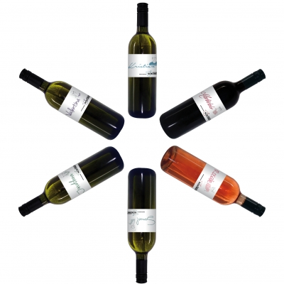 Lernen wir uns kennen Paket   / Weinfamilie Georg Schober