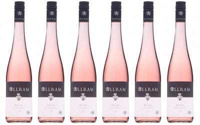 Allram Rosé im 6er Vorteilspack   / Allram