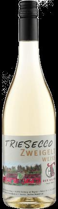 Blanc de Noir Frizzante aus weißgepresstem Zweigelt 2020 / Raimund Bauer - Triesneckerhof