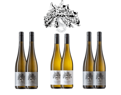 Neue Spitzenweine aus Senftenberg im Kremstal   / Wein-S Andrea Schenter