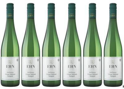 6 x Grüner Veltliner 2020 Ried Panzaun Kamptal DAC zum Vorteilspreis   / Ehn Ludwig