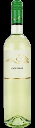 Grüner Veltliner Jungspund 2018 / Fein