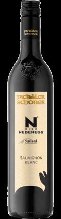 Sauvignon Blanc Ried-Nebenegg 2017 / Pichler-Schober