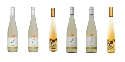 Weißwein klassisch bis edelsüß Welschriesling und Weissburgunder   / Biodyn Weinhof HAIDER