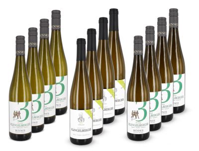 12 x deutscher Top-Riesling   / Renner