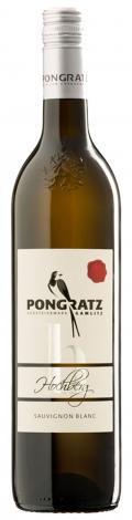 Sauvignon Blanc Hochberg  2016 / Pongratz Markus