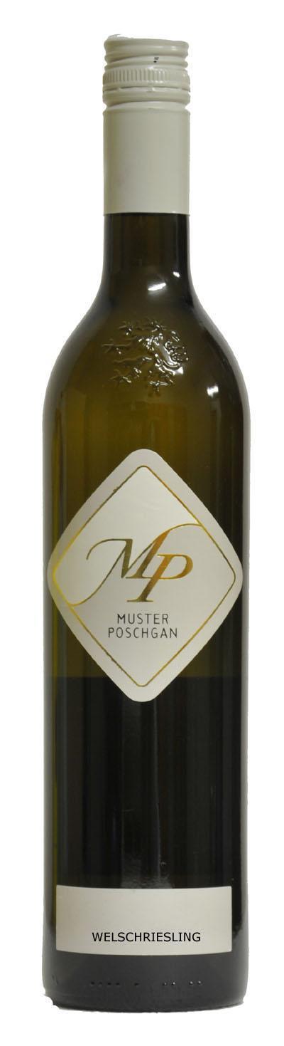 Welschriesling  2018 / Muster-Poschgan